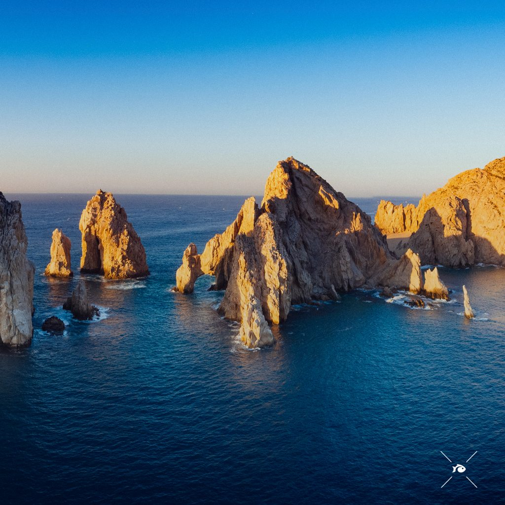 This image has an empty alt attribute; its file name is LOSCABOS-1024x1024.jpg